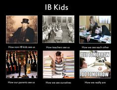 How can I prepare and prove myself for the IB program?