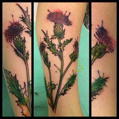 #thistle #tattoo #blackrosetattoo #watercolor #watercolortattoo #flower