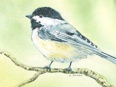 Original Chickadee Watercolor Painting - Bird Art Orginal 4 x 6 Art for Sale Arches Watercolor Paper, Watercolor Bird, Watercolor Paintings, Original Paintings, Watercolors, Spring Images, Art Walk, Online Art Gallery, Art Online