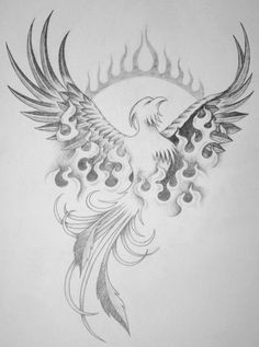 phoenix rebirth - Phoenix Tattoo - Amazing Garden Ideas - DIY Home Accents - Hairstyle For Long - DIY Jewelry Tutorial Bird Drawings, Art Drawings Sketches, Tattoo Sketches, Tattoo Drawings, Phoenix Bird Tattoos, Phoenix Tattoo Design, Great Tattoos, Body Art Tattoos, Tatoos