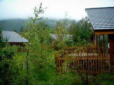 Forest Holiday cabin - Ardgartan Argyll, Scotland #ukbreak #lochlomond #Trossachs