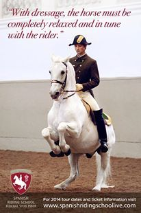 Riders must be completely in tune with the horse