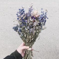 #podzim #zima #advent #slamenky #nordic #flowers #autumn #winter2017 #subtle #dryflowers #tesimese #vanoce #e-shop #inspo #inspiration #neznost #kvetiny Crown, Jewelry, Instagram, Corona, Jewlery, Jewerly, Schmuck, Jewels, Jewelery