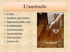 antitarlo-restaurare-facile-artedelrestauro.it