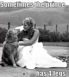 Love this..... I used to say, my Dog Lucky Boy, was the Man of my Dreams.... I still miss you boy.....