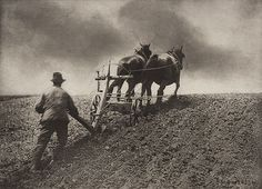 Peter Henry Emerson (La Palma, 1856 – Falmouth Cornwall, A Stiff Pull, The Royal Photographic Society, National Media Museum Vintage Farm, Vintage Wall Art, History Of Photography, Art Photography, Classic Photography, Photography Gallery, People Photography, Emerson, Vintage Photographs