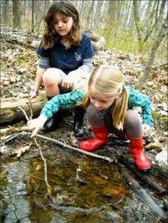 Natural-terrain schoolyards reduce children's stress