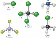 Image result for nonpolar and polar Science Chemistry, Organic Chemistry, Physics, Engineering, Students, Knowledge, Math, Nice, Ap Chemistry