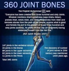 We have 360 joints! Duaa Islam, Islam Hadith, Allah Islam, Islam Muslim, Islam Quran, Alhamdulillah, Islam And Science, Science Facts, Miracles Of Islam