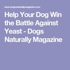 Help Your Dog Win the Battle Against Yeast - Dogs Naturally Magazine