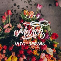 I can't believe it's already the first day of March! I'm so inspired by all the new spring colors. What are you most inspired by? Seasons Months, Days And Months, Months In A Year, 1 Year, First Day Of Spring, Spring Is Here, Spring Time, Happy Spring, Hello Spring