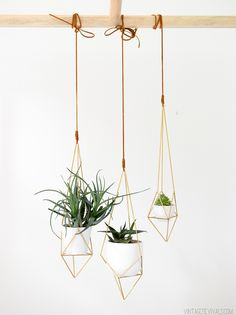 hanging brass plante