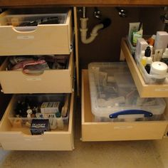 Storage under the vanity. These sliding shelves are so useful.