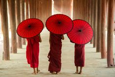 These novices or priests in Burma. Character Aesthetic, Character Creator, Character Reference, Burmese Girls, Ty Lee, Belle Beauty And The Beast, Treasure Planet, Red Umbrella, Fire Nation
