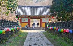 Types of University Jobs in Korea