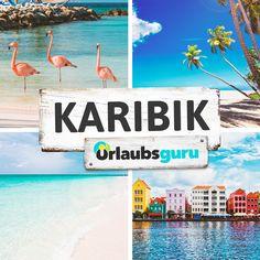 Kuba, die Dominikanische Republik, Jamaika, Aruba, Curacao und die Bahamas sind nur einige der traumhaften Ziele in der Karibik. Auf meinem Karibik Board erfahrt ihr mehr über die Karibik und ihre schönsten Inseln. #karibik #domrep #aruba #bahamas #curacoa #urlaub #traumziele #fernweh Barbados, Dom Rep, Ach Ja, Travel, Jamaica, Cuba, Vacation Travel, Viajes, Destinations