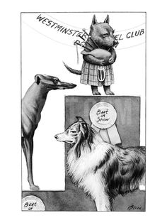 Scottie dog with bagpipes and kilt wins best in show in Westminster Kennel… - New Yorker Cartoon Premium Giclee Print by Harry Bliss at Art.com