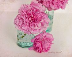 Pink Peonies Mint Mason Jar Photo Peony Bouquet Print Vintage Pastel Aqua Vase Romantic Cottage Fuschia Floral Decor 8x10 Art Photography...