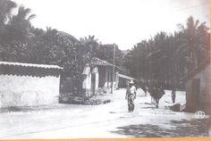 Acapulco Antiguo Camino a Las Brisas