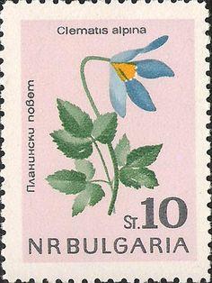 ◇ Bulgaria 1963