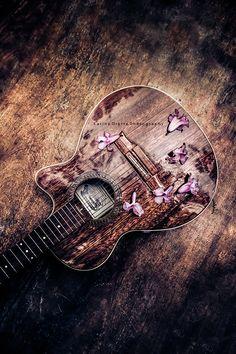 mi guitarra y flores de lapacho