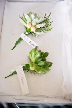 succulent pins from our wedding by The Willow Branch