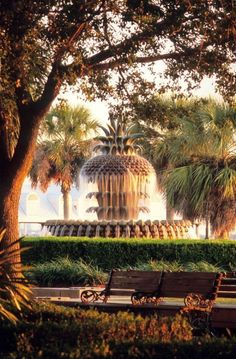 The Pineapple Fountain, Waterfront Park, Charleston, South Carolina Oh The Places You'll Go, Places To Travel, Dream Vacations, Vacation Spots, Summer Vacations, Charleston South Carolina, Downtown Charleston Sc, Charleston Style, Roadtrip