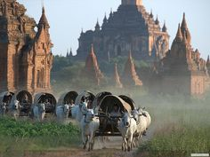 Bagan, Myanmar (© Myanmar Ministry of Hotels and Tourism) Yangon, Mandalay, Pagoda Temple, Inle Lake, World Photography, Travel News, Travel Around The World, Southeast Asia, Barcelona Cathedral