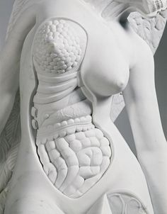 Damien Hirst. The Anatomy of an Angel (detail)