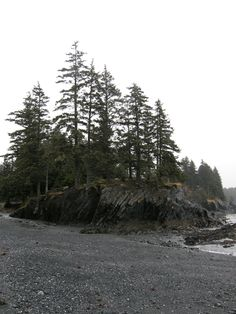 Perhaps a visit to my cousin in Kodiak is in order... Mill Bay, Kodiak, Alaska