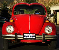 REAL Love Bug! Should have done the same with the headlights!