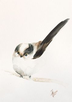 Buy Long-tailed Tit (Aegithalos caudatus), Watercolour by Andrzej Rabiega on Artfinder. Discover thousands of other original paintings, prints, sculptures and photography from independent artists.