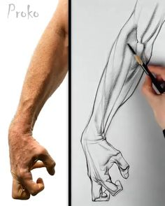 Anatomy for Artists - Drawing the Arm Still one of my favorite drawings from the anatomy course. Learn about the layin and shading process for the f. Pencil Art Drawings, Art Drawings Sketches, Easy Drawings, Sketches Of Hands, Drawings Of Hands, How To Shade Drawings, Drawing Techniques, Drawing Tips, Drawing Ideas