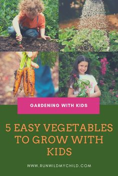 Gardening with Kids: 5 Easy Vegetables to Grow. Plus, lots fo great tips for growing a garden in small spaces (or inside) and all the benefits of gardening with kids! Vegetable Garden For Beginners, Starting A Vegetable Garden, Gardening For Beginners, Gardening Tips, Vegetable Gardening, Easy Vegetables To Grow, Home Grown Vegetables, Cherry Tomato Plant, Vegetable Boxes