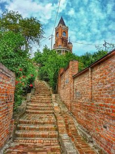 Moj Zemun, Serbia