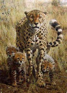 Cheetah and cubs, by Carl Brenders                                                                                                                                                     Más