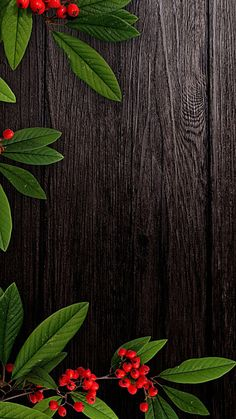 Wallpaper Natal, Abstract Iphone Wallpaper, Flower Background Wallpaper, Flower Phone Wallpaper, Framed Wallpaper, Phone Screen Wallpaper, Wood Wallpaper, Cellphone Wallpaper, Colorful Wallpaper