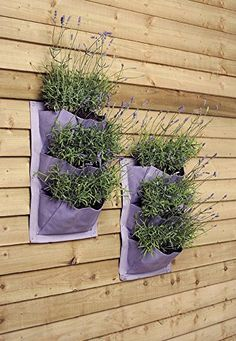 Burgon & Ball Verti-Plant Fence or Wall Planters, Lavender, pack of 2 Garden Accessories, Vertical Planter, Garden Containers, Plants, Plant Wall Decor, Garden Decor, Vertical Garden Wall, Planters, Vertical Vegetable Garden