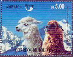 Gentle Spirit Behavior and Training Llamas, Alpacas, Cathy Spalding