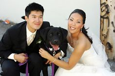 Best wedding pictures with dogs getting married 61 Dog Wedding, Wedding Pictures, Wedding Stuff, Got Married, Getting Married, Simple Wedding Reception, I Love Pic, Converse Classic, Photos With Dog