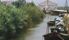 #arrozenruta es navegar en la albufera de valencia