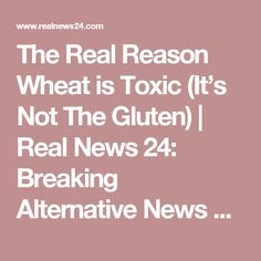 The Real Reason Wheat is Toxic (It's Not The Gluten)   Real News 24: Breaking Alternative News Source