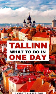Tips on how to spend one day in Tallinn. Places to visit, where to eat and stay, the best day tours and how to get around and to Tallinn from Helsinki and St Petersburg if not flying in. European Travel Tips, Europe Travel Guide, European Destination, Travel Guides, Travel Destinations, Travel Advice, Estonia Travel, Eastern Europe, Helsinki