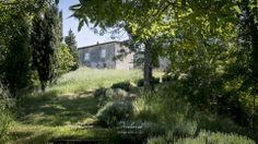 Castelnau_des_Fieumarcon_wedding_photography_12