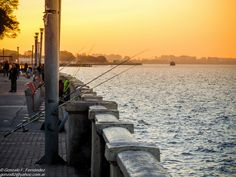 https://flic.kr/p/yLgx9x | Pesca al atardecer. Fishing at sunset. | Costanera Norte. Buenos Aires, Argentina.