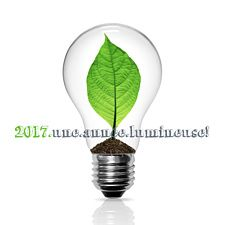 Voeux entreprise ampoule verte