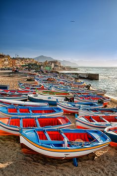 A few years ago, I stayed in Aspra Bagheria Sicily for a week.  There is a fish market each morning where the local fishermen meet to sell the seafood of the day.