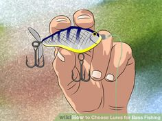 Image titled Choose Lures for Bass Fishing Step 1