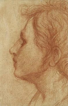 Andrea del Sarto (1486–1530), Head of a Youth in Profile, ca. 1522. Red chalk, 8 1/4 x 5 1/8 in. (21 x 13 cm). The Ashmolean Museum, Oxford; bequeathed by Dr. Gerhard Weiler, 1995 © Ashmolean Museum, University of Oxford
