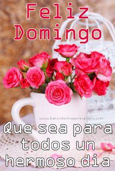 feliz-lunes-flores-mensaje-especial.png (268×400)